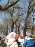 Экскурсия в парк «Дружбы народов»